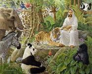 Jesus nos enseña a amar a los animales